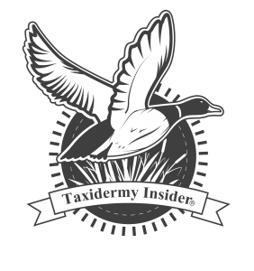 taxidermyinsiderlogo